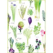 "Mille Potager Printemps Kitchen Towel 20""x28"", 100% Cotton"