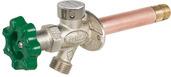 "P-164D08: 8"" Residential Quarter-turn anti-siphon wall hydrant"