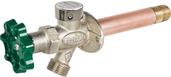 "C-144X16: 16"" Residential anti-siphon wall hydrant"