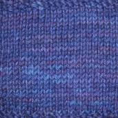 Siberian Iris Tonos Pima Silk