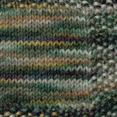 Herbal Mix: Hand Paint Worsted