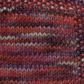 Berry Bouquette: Hand Paint Worsted