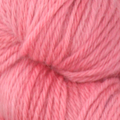 Honeysuckle Tonos Worsted