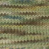 BHW10 Everglades Hand Paint Worsted