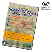 Solitary Bee Guide