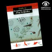 FG14 Field Guide - Keeping Frog Tadpoles