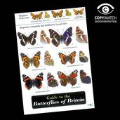 FG3 Field Guide - Butterflies