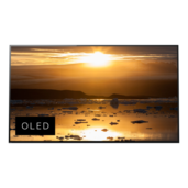 Téléviseur OLED 4K HDR A1E avec Acoustic SurfaceMC