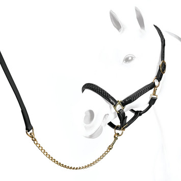 LEATHER HEADCOLLAR WITH ROPE BL COB picture