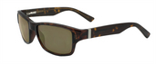 Zealot Tortoise / Polarized True Color Green Reflection Silver