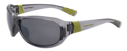 Axo Crystal Cool Grey / True Color Grey Reflection Silver Polarized picture