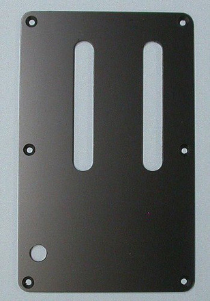 4PT1CE2B - Edge III Tremolo Cavity Plate picture