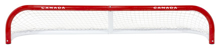 "POND HOCKEY NET 6' X 1' W/ 2"" POSTS picture"