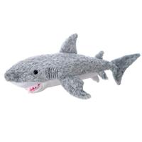 Tiburon picture