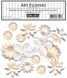 Art Flowers White And Cream picture
