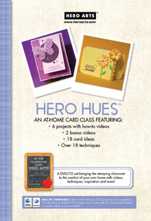 Hero Hues Video Technique DVD picture