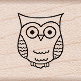 Tiny Owl picture