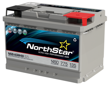 NSB-AGM48 (L3) Battery picture