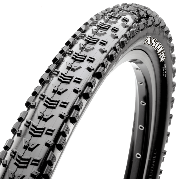29x2.25 Aspen 120TPI Tubeless Ready picture