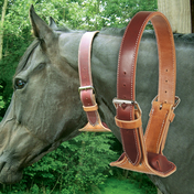 The DARE Cribbing Collar
