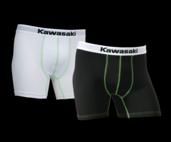 Coppia boxer Kawasaki L