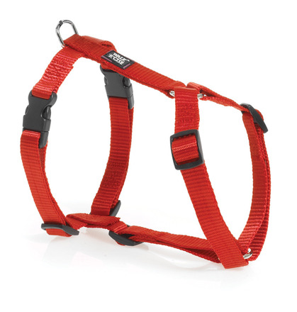 Adjustable Harness - Small Red picture