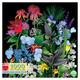 Summer Garden Sampler 1000pc Rtg 11x11bx