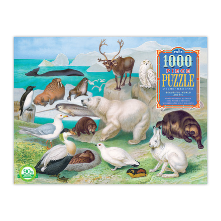 Beautiful World: Arctic 1000 Piece Puzzle picture