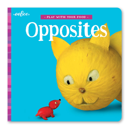 Opposites Board Book picture