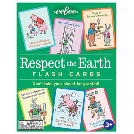 Respect The Earth Flash Cards picture
