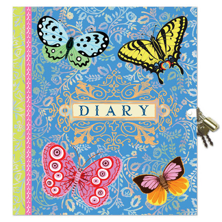 Beautiful Lock Diary picture