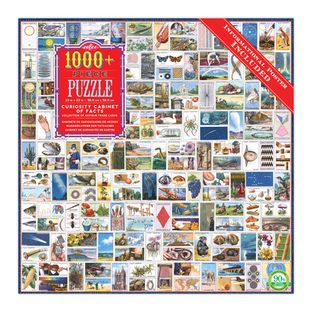 Curiosity Cabinet of Facts 1008 Piece Puzzle picture