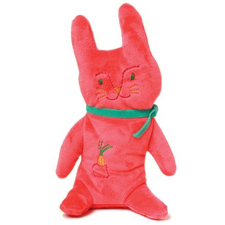 Papaya Bunny picture