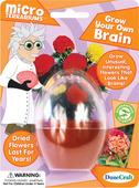 Grow Your Own Brain