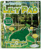 Grow Your Own Lily Pad