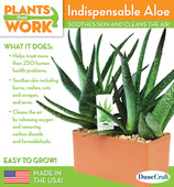 Indispensable Aloe