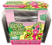 Rainbow Rita