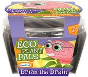 Brian the Brain