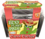 Carol Cactus