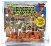 Cactus Roundup
