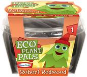 Robert Redwood