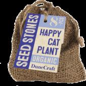 Happy Cat Plant
