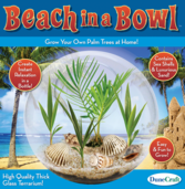 Beach in a Bowl