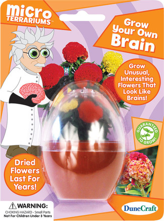 Grow Your Own Brain picture