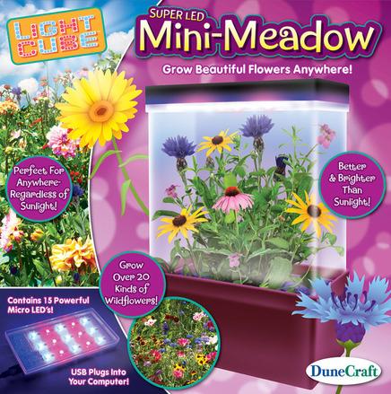 Mini-Meadow picture