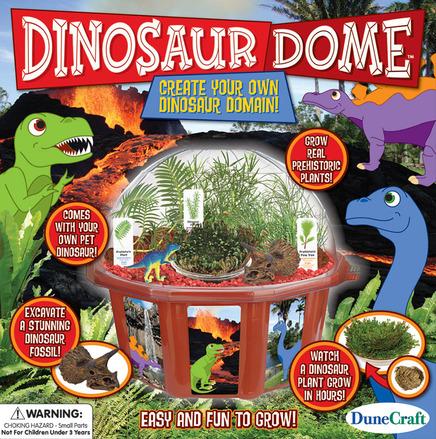 Dinosaur Dome picture