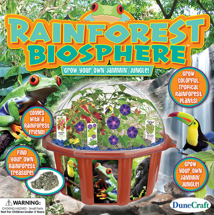 Rainforest Biosphere picture