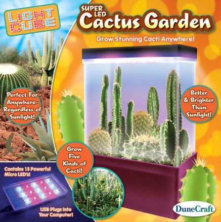 Cactus Garden picture