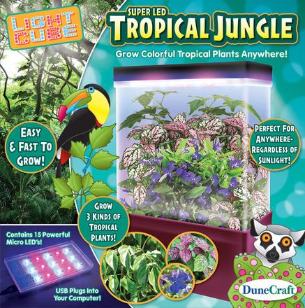 Tropical Jungle picture