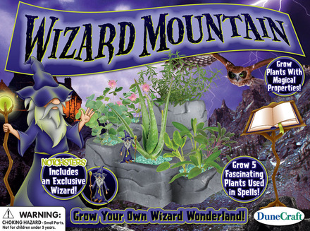 Wizard Mountain picture